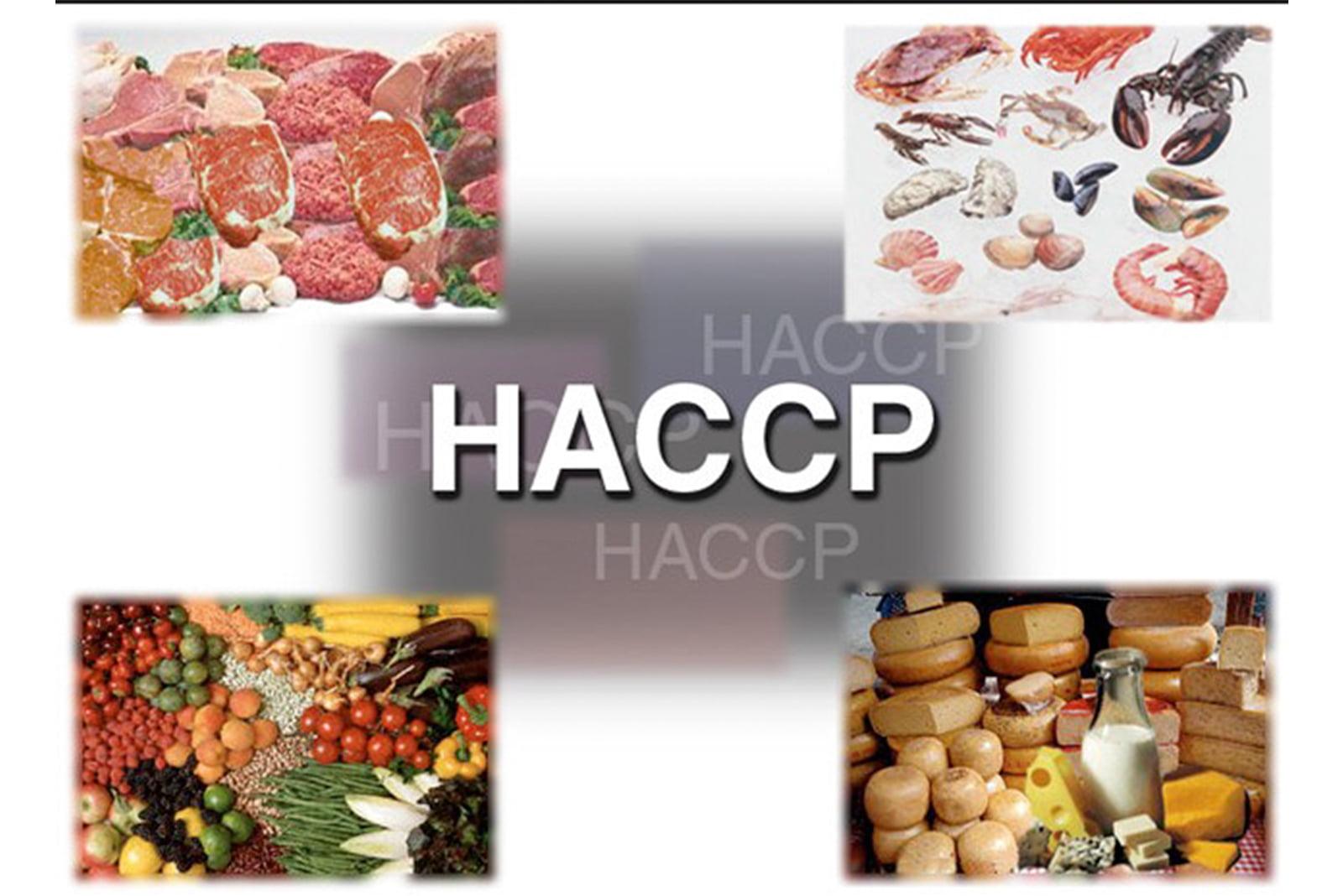 HACCP trong bếp công nghiệp