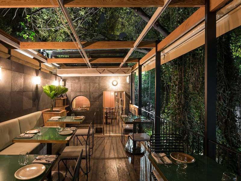 Cây xanh phủ trên trần và xung quanh tường